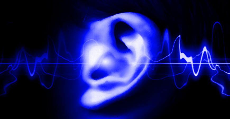 Hyperacousie et Cerveau