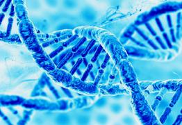 Les Acouphènes au cœur de notre ADN !