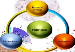 Le kefir, un probiotique aux multiples vertus pour booster votre immunité