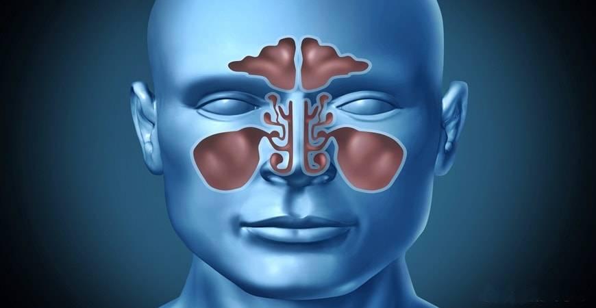 7 Conseils pour soulager une sinusite naturellement