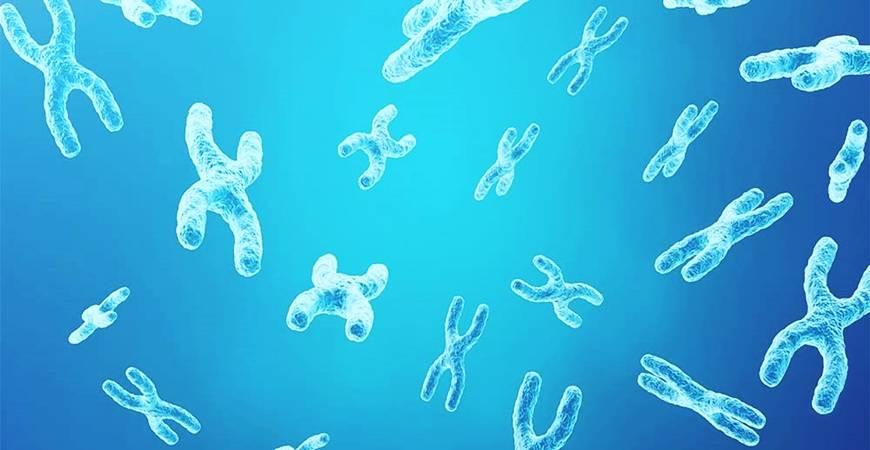 Les acouphènes sont-ils héréditaires ?