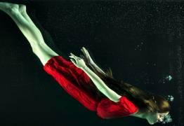 Plongée sous-marine : La propagation des sons dans l'eau