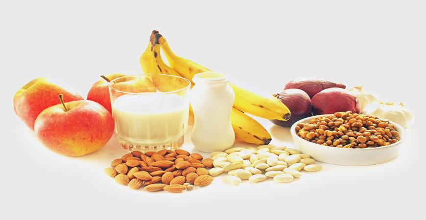 Probiotiques et Aliments fonctionnels
