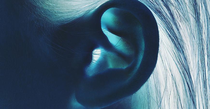 Anatomie et Physiologie de l'oreille