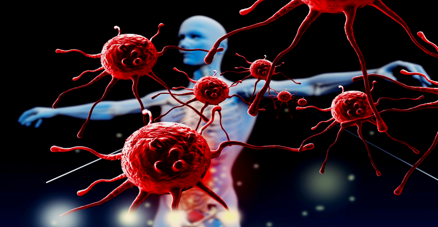 Comprendre notre système immunitaire